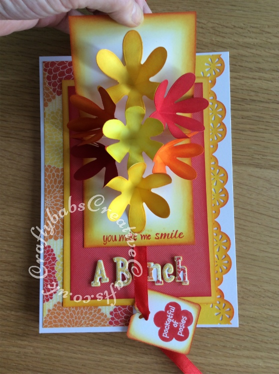Flower Pop Up Thank you card made using the following dies; Sizzix sizzlits Girls are weird alphabet dies and Xcut petal posy flower dies. Tag and inside stamped - craftybabscreativecrafts.co.uk